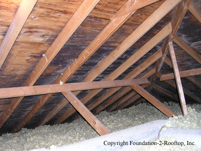 Mold growth in the attic.