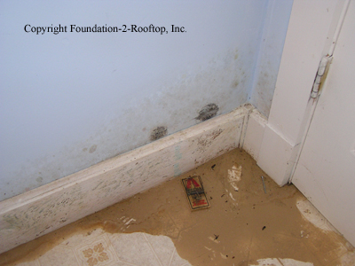 Wood foundation leaking and basement taking on water.