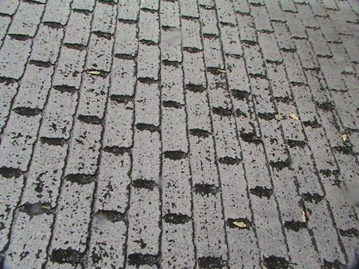 Roof Inspection: Defective Organic Backed Shingles